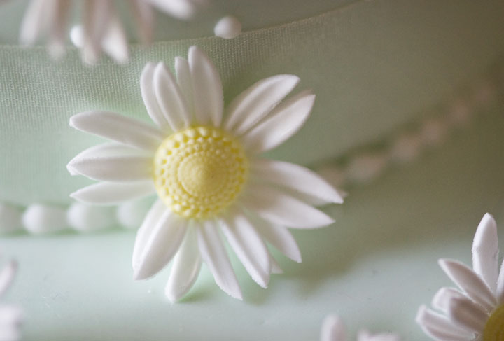 As Fresh As a Sugar Daisy, Wedding Cake